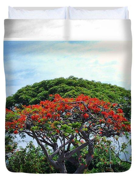 Monkey Pod Trees - Kona Hawaii Duvet Cover