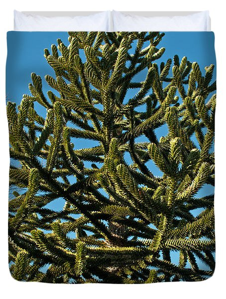 Monkey Puzzle Tree E Duvet Cover by Tikvah's Hope