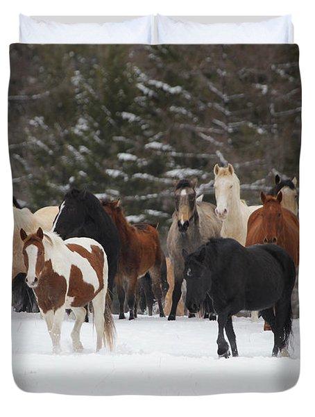 Montana Herd Duvet Cover