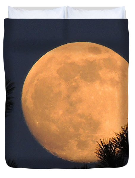 Duvet Cover featuring the photograph Moon Pines by Charlotte Schafer