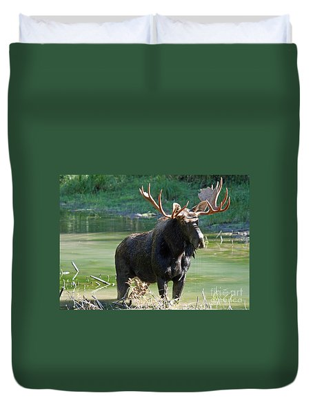 Moose Country Duvet Cover by Bob Hislop