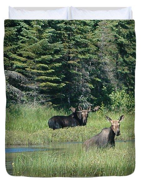 Moose Couple Duvet Cover