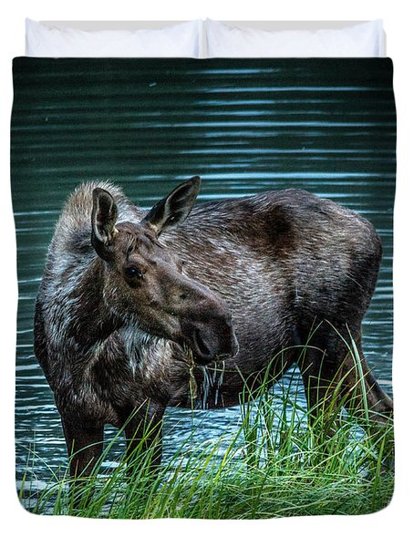 Moose In The Water Duvet Cover