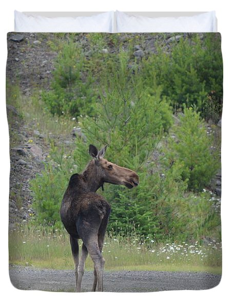 Duvet Cover featuring the photograph Moose by James Petersen