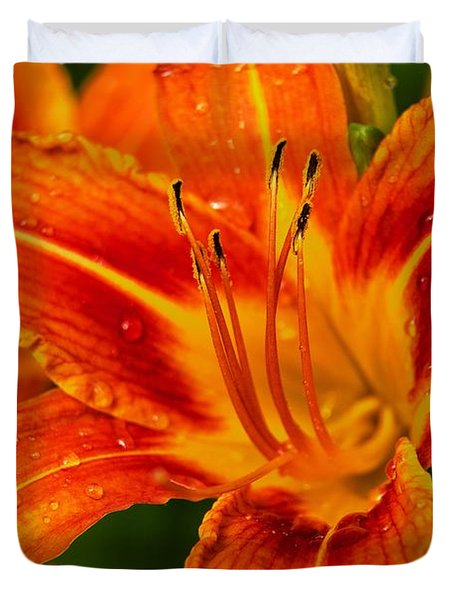 Morning Dew Duvet Cover by Dave Files