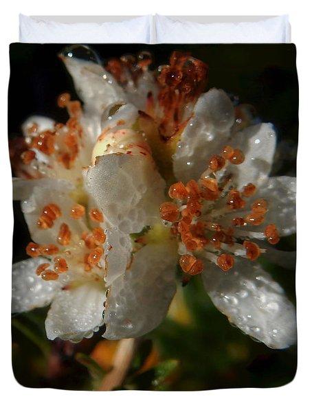 Morning Dew Duvet Cover by Pamela Walton