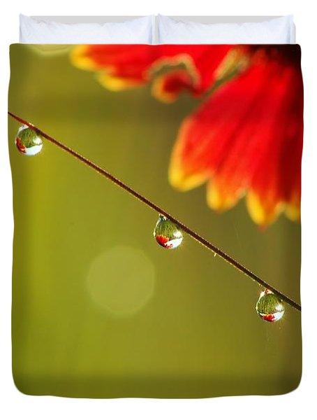 Morning Dew Duvet Cover by Patrick Shupert