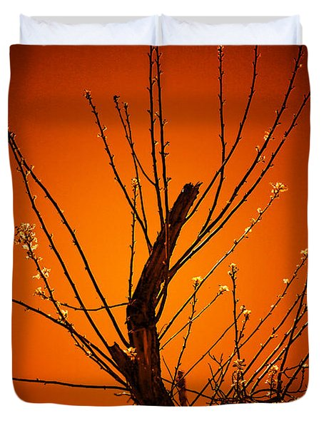Morning Dove Sunrise Duvet Cover
