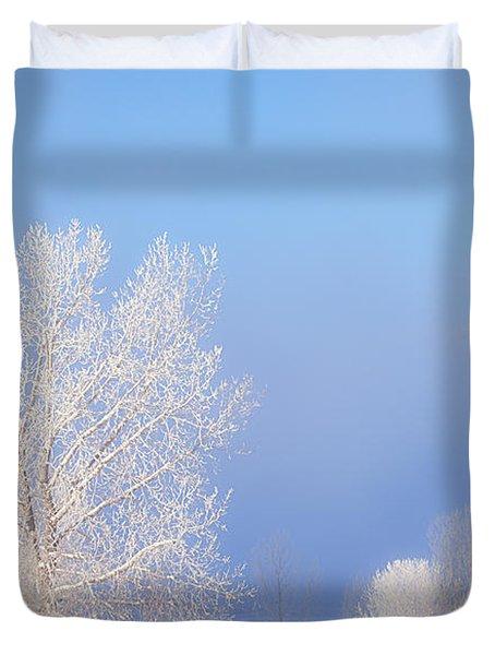 Morning Frost Duvet Cover by Darren  White