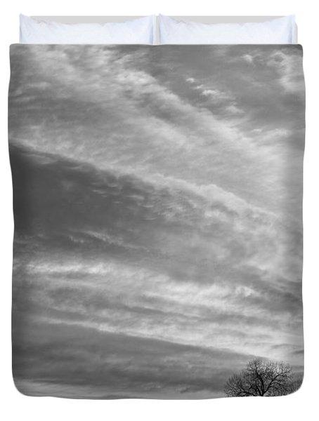 Morning Has Broken Three Trees Bw Duvet Cover by James BO  Insogna