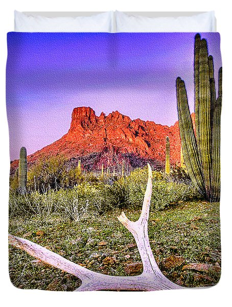Morning In Organ Pipe Cactus National Monument Duvet Cover by Bob and Nadine Johnston