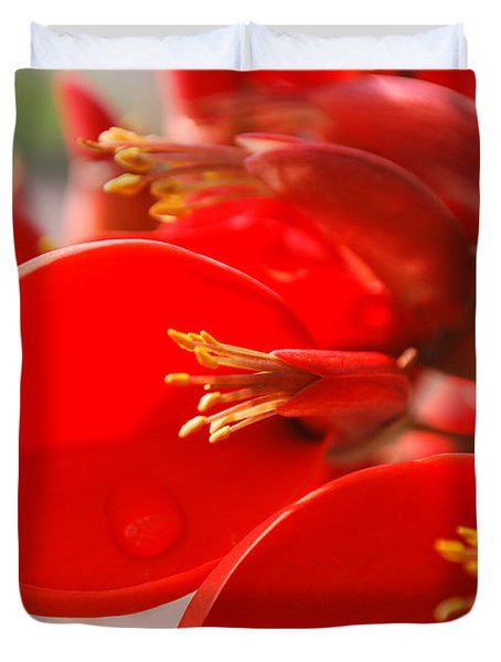 Duvet Cover featuring the photograph Morning Jog by Miguel Winterpacht