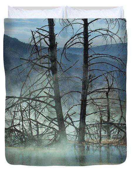 Morning Mist At Mammoth Hot Springs Duvet Cover by Sandra Bronstein