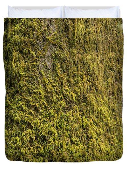 Moss Covered Tree Olympic National Park Duvet Cover by Steve Gadomski