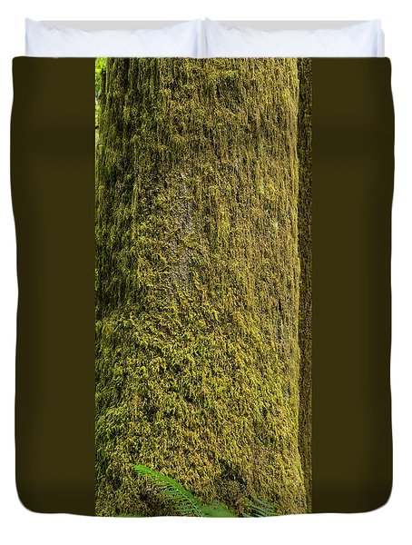 Moss Covered Tree Olympic National Park Duvet Cover