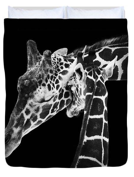 Mother And Baby Giraffe Duvet Cover by Adam Romanowicz