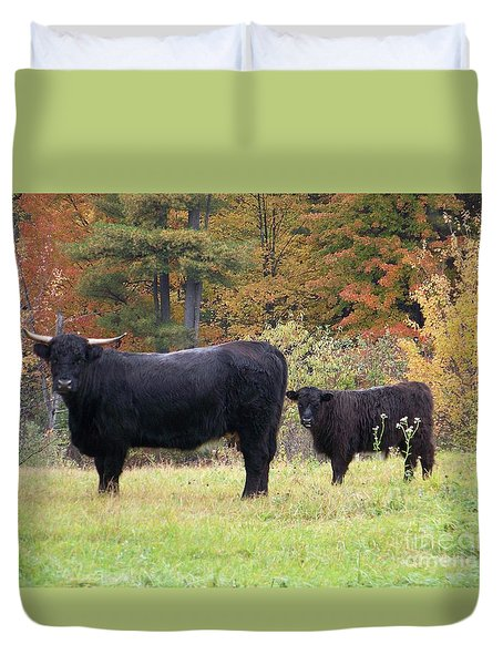 Duvet Cover featuring the photograph Highland Cattle  by Eunice Miller