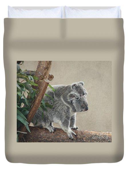 Mother And Child Koalas Duvet Cover by John Telfer