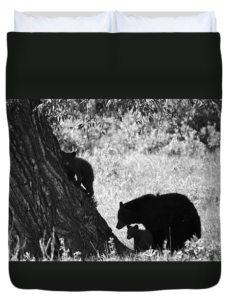 Mother Black Bear With Two Cubs Duvet Cover