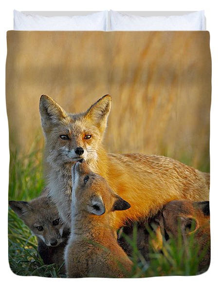 Mother Fox And Kits Duvet Cover