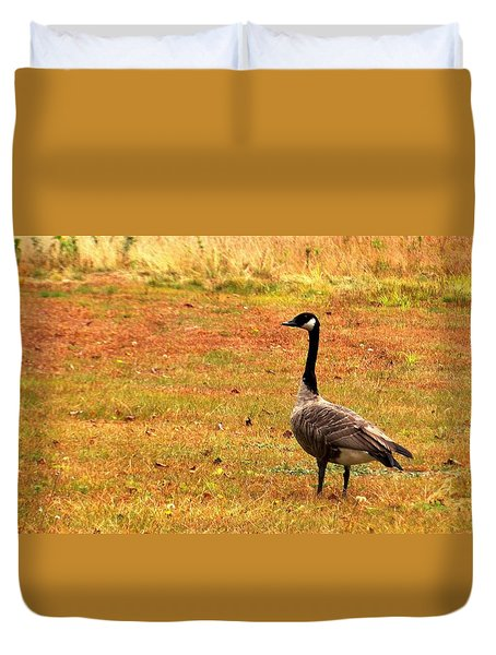 Mother Goose Fall Foliage Tours Duvet Cover