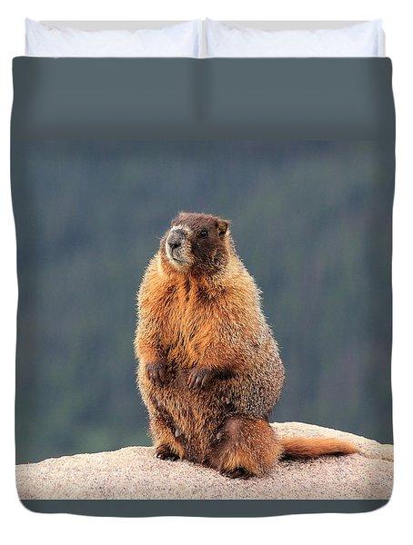 Mother Marmot Duvet Cover