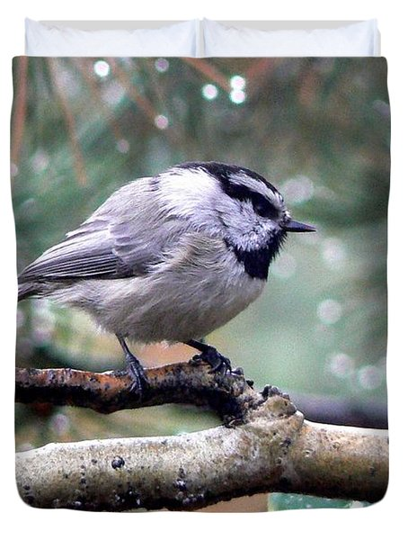Mountain Chickadee On A Rainy Day Duvet Cover