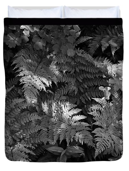 Mountain Ferns 1 Duvet Cover