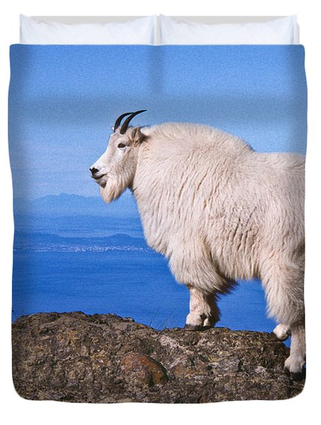 Mountain Goat On Klahane Ridge Duvet Cover by Jeff Goulden