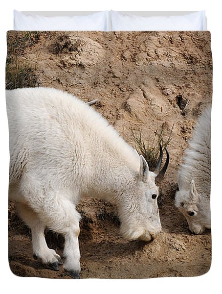 Duvet Cover featuring the photograph Mountain Goats At The Salt Lick by Vivian Christopher