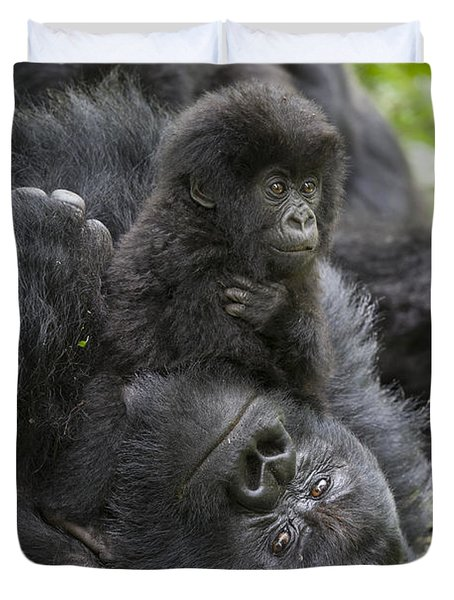 Mountain Gorilla Baby Playing Duvet Cover