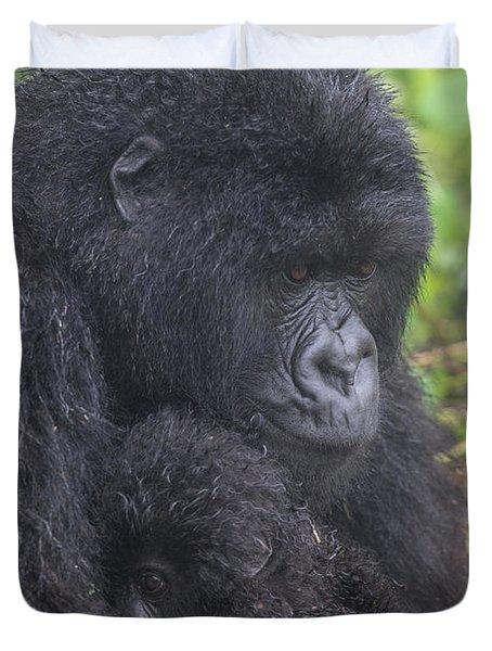 Mountain Gorilla, Gorilla Beringei Duvet Cover