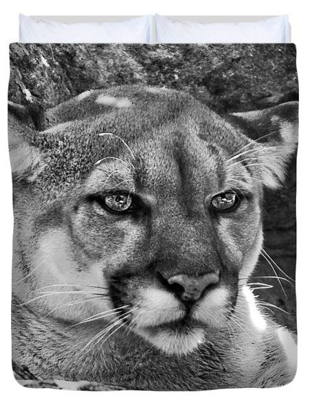 Mountain Lion Bergen County Zoo Duvet Cover