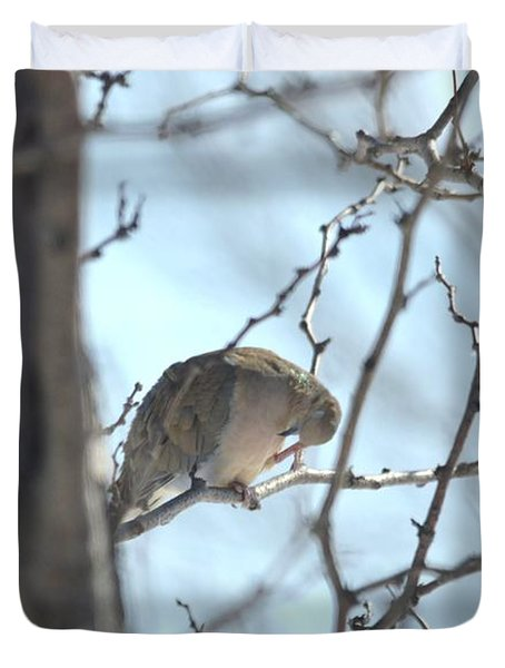 Duvet Cover featuring the photograph Mourning Dove by Dacia Doroff
