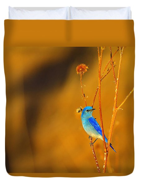Mr. Blue Duvet Cover