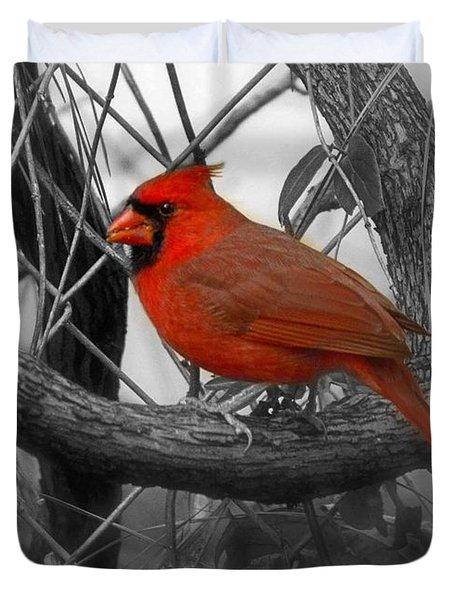 Mr Cardinal -card Duvet Cover