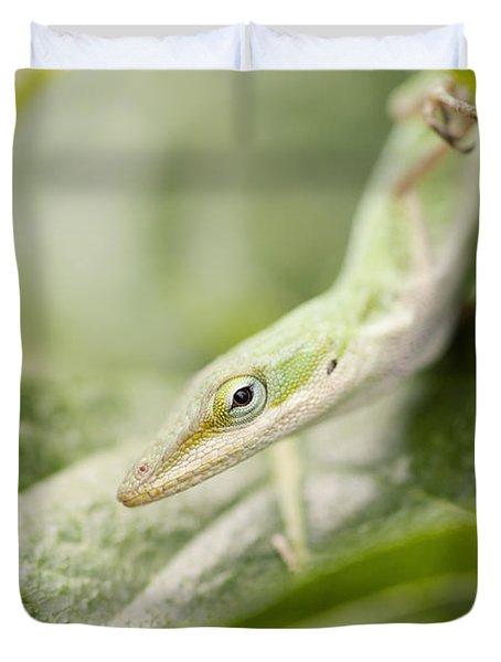 Mr Lizard Duvet Cover by Erin Johnson