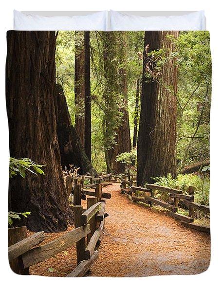 Muir Woods Trail Duvet Cover