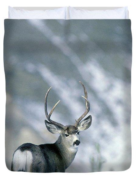 Mule Deer Buck Odocoileus Hemionus Duvet Cover