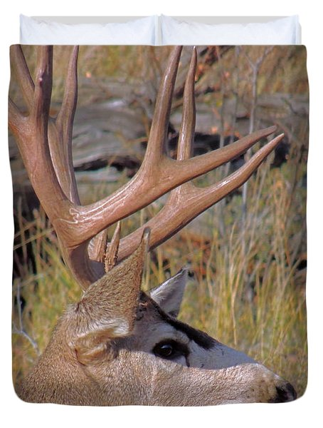 Duvet Cover featuring the photograph Mule Deer by Lynn Sprowl