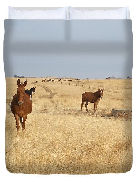 Mules In Gold Grass Duvet Cover