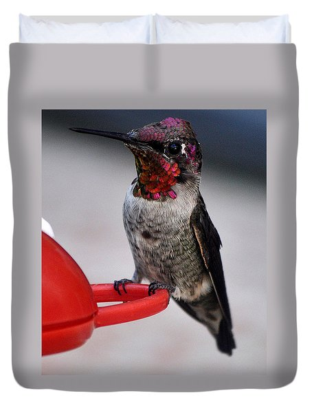 Duvet Cover featuring the photograph Multi Colored Hummingbird Male Anna by Jay Milo