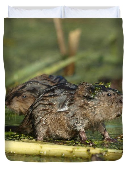 Duvet Cover featuring the photograph Munchkins by James Peterson