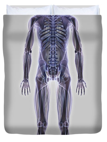 Muscle System Duvet Cover