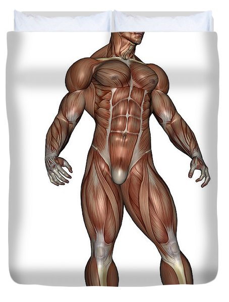 Muscular Man Standing Duvet Cover