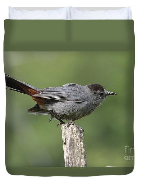 My Catbird Duvet Cover