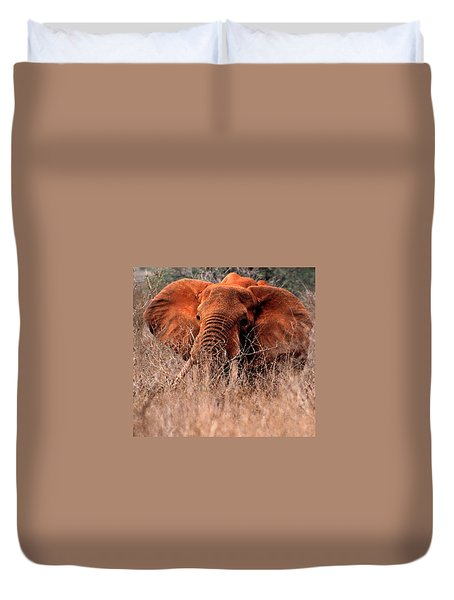 My Elephant In Africa Duvet Cover by Phyllis Kaltenbach