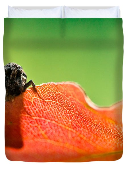 My Leaf Duvet Cover by Shane Holsclaw