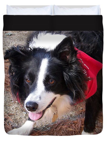 Duvet Cover featuring the photograph Female Border Collie by Eunice Miller