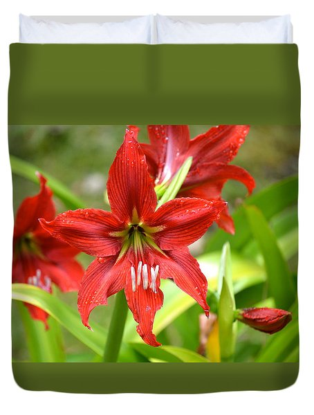 My Red Daylily...after The Rain Duvet Cover